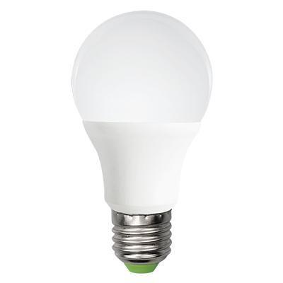 LED NORM E27 12W 6500K *